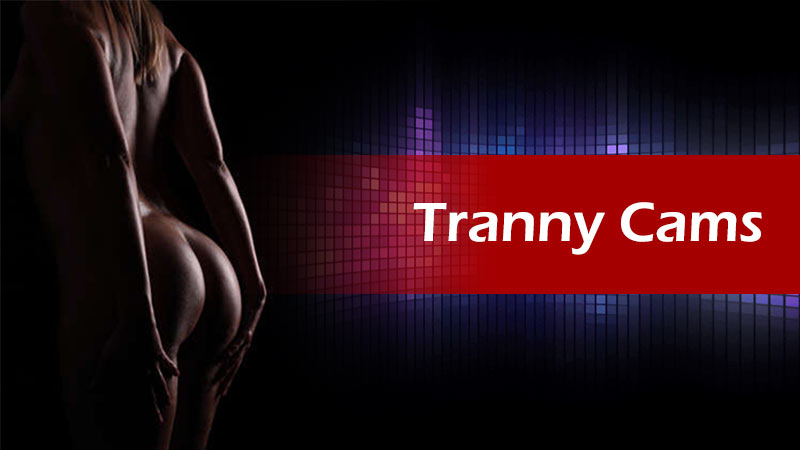 Tranny cams